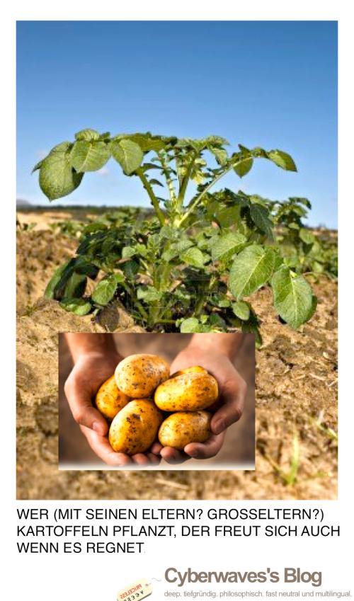 KartoffelKampagne